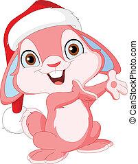 reizend, weihnachten, kaninchen