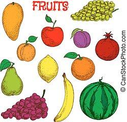 Ripe und frische Früchte farbenfrohes Zeichnungssymbol.