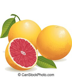 rosa grapefruit