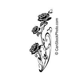 rosen, silhouette