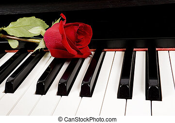 Rote Rose auf dem Klavier