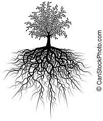 Rußbaum