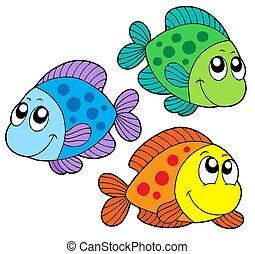 Süßfarbene Fische