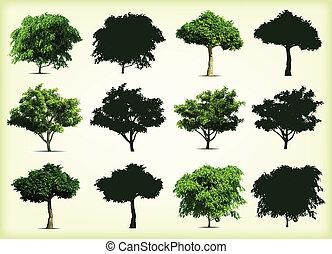 Sammelt grüne Bäume. Vektor Illustration
