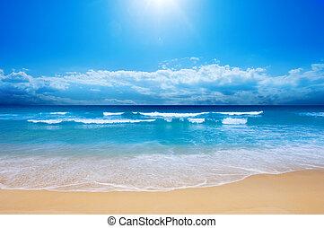 sandstrand, paradies