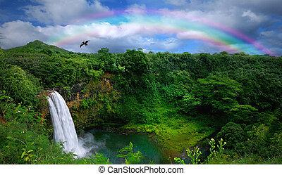 schöne , oberseite, wasserfall, hawaii, ansicht