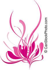 schöne , rosa, lotos, blühen