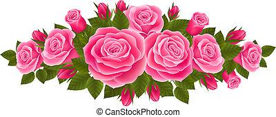 Schöne Rosengrenze.
