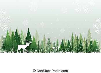Schneeiger Winterwald Hintergrund