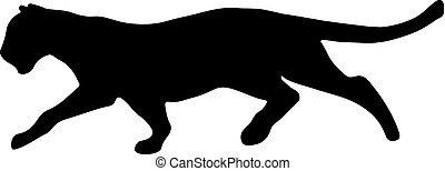 schwarz, creeps, auf, opfer, panther