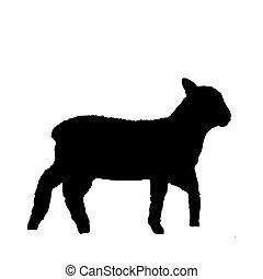 Schwarze Silhouette eines Lammes auf weiß
