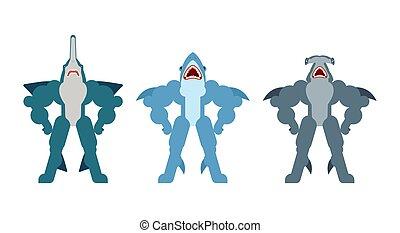 set., strongman, mächtig, hammerhai, predator., säge, marine fische, starke , hai