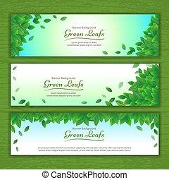 Set von Vektor Natur Hintergrund Banner mit grünem Blattrahmen.
