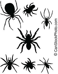 silhouette, spinnen