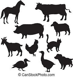 Silhouetten von Haustieren.