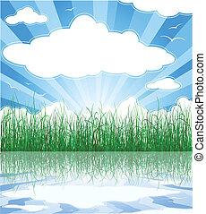 sommer, wolkenhimmel, sonnig, gras, hintergrund, wasser