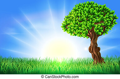 Sonnenfeldbaum-Hintergrund