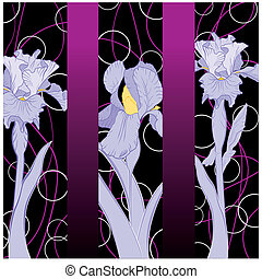 Spring blühende Irismuster