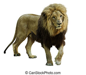 Stehender Löwe