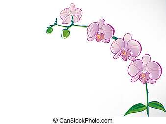 Stylisierte Orchidee