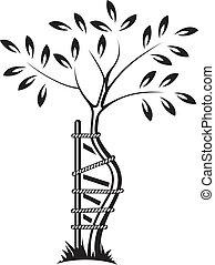 symbol, orthopädie, traum
