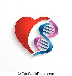symbole, medizinprodukt, concept., genetik, herz, spirale, doppelgänger, dns, biologie, begriff