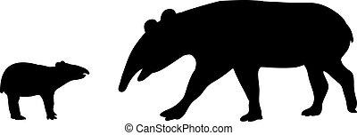 tapir, tiere, family., silhouetten