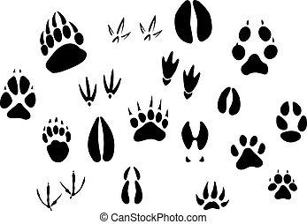 Tierabdrücke
