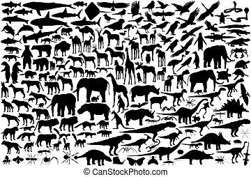 Tieraufzeichnungen