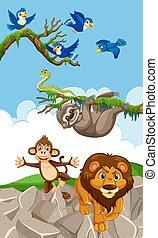 tiere, szene, blaues, vögel, land, fliegendes, viele