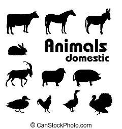 Tierheimtiere Silhouette