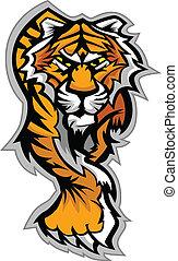 Tiger Maskottchen-Körpervektorgrafik