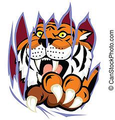 Tiger mit Klauen, die den Backgro zerreißen