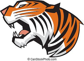 Tigerkopf kreist den Sichtvektor.