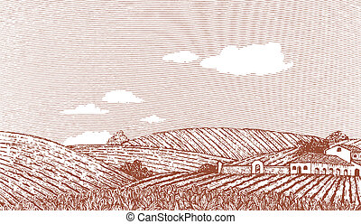 Toskana-Landschaftsszene