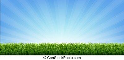 umrandungen, grüner hintergrund, banner, sunburst, gras