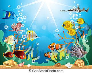 underwater, vektor, abbildung, welt