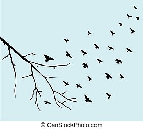 Vögel fliegen.