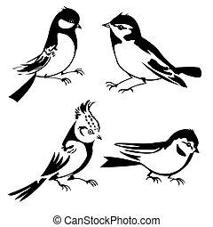 Vögel im weißen Hintergrund, Vektor Illustration