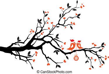 Vögel küssen sich auf einem Baum, Vektor