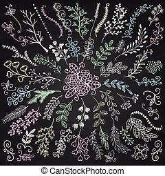 Vector Board-Menü Hand gezeichnet rustikale Blumenzweige
