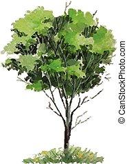 Vector - Jahreszeiten Baum.