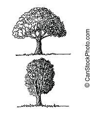 Vektorbäume mit Blättern