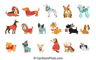 vektorgrafik, haustiere, pullover, reizend, schals, mögen, weihnachten, hunden, illustrationen, accessoirs, elemente, fröhlich, sammlung, hüte, gestrickt