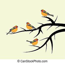 Vektorvögel auf Baumästen.