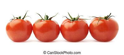 Vier Tomaten in einer isolierten Linie.