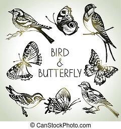Vogel- und Schmetterlingsset, hand gezeichnete Illustrationen.