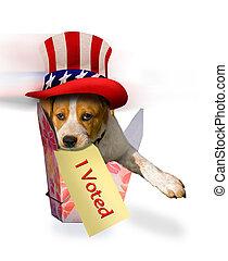 voted.