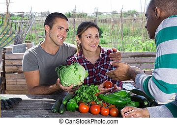 während, sprechende , kleingarten, landwirte, sitzen, tisch