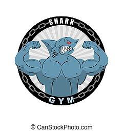Wütend starker Hai. Shark Bodybuilder mit großen Bizeps. Emblem für Sportteams. Logo für Sport. Athletische Fisch-Vektorgrafik